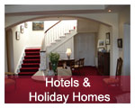 Hotels & Holiday Homes
